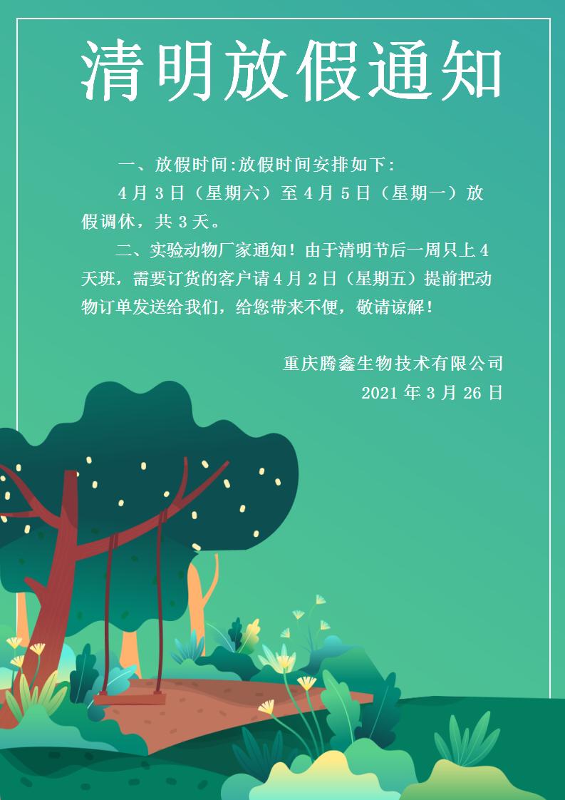 文字文稿1_01.png